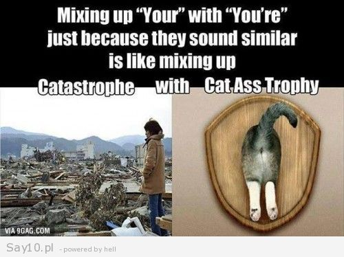 cat ass trophy